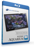 BluScenes Scenic Aquarium with Digital Copy Download