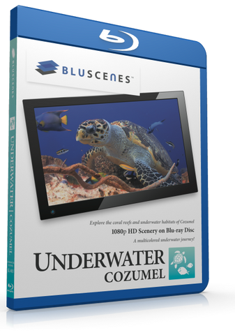BluScenes: Underwater Cozumel with Digital Copy Download