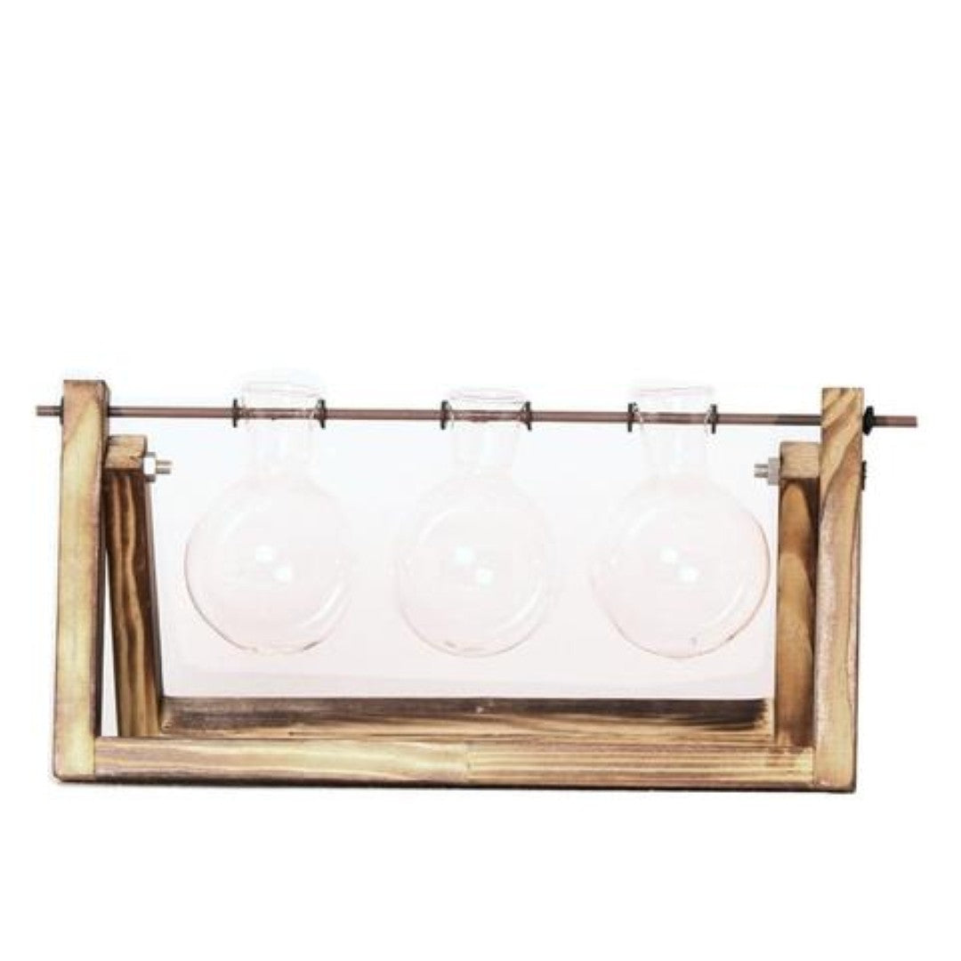 Transparent Hydroponic Plant Containers Vintage Wooden Stand Glass
