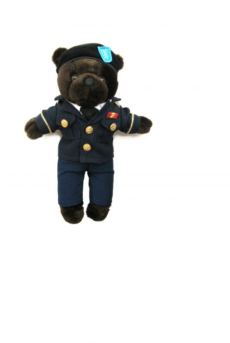 Army Dress Uniform Bear