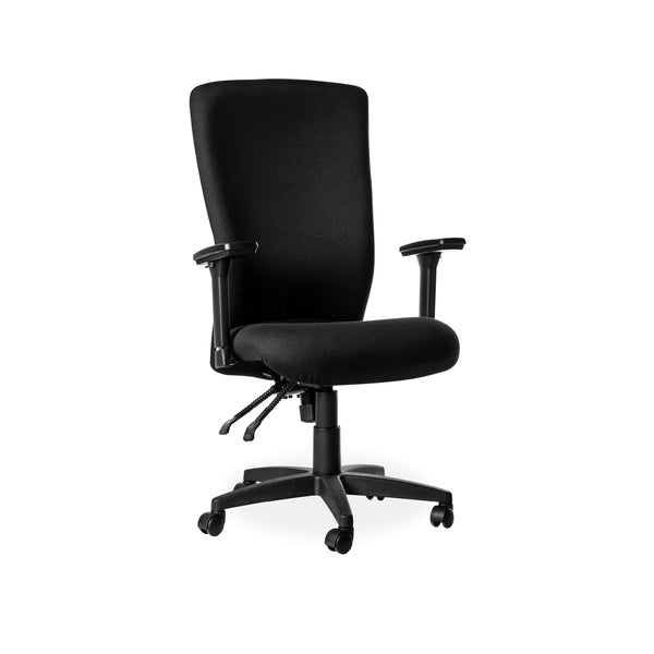 Hedcor Spine Chair