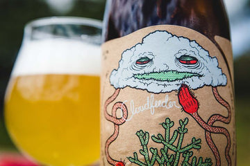 Tired Hands / Jester King Cloudfeeder Farmhouse Ale
