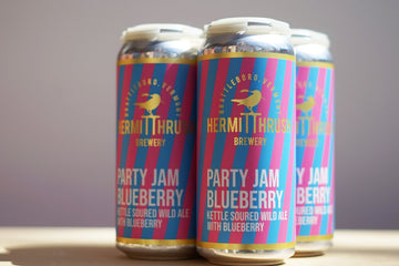 Hermit Thrush Party Jam Blueberry Sour *Single Cans*