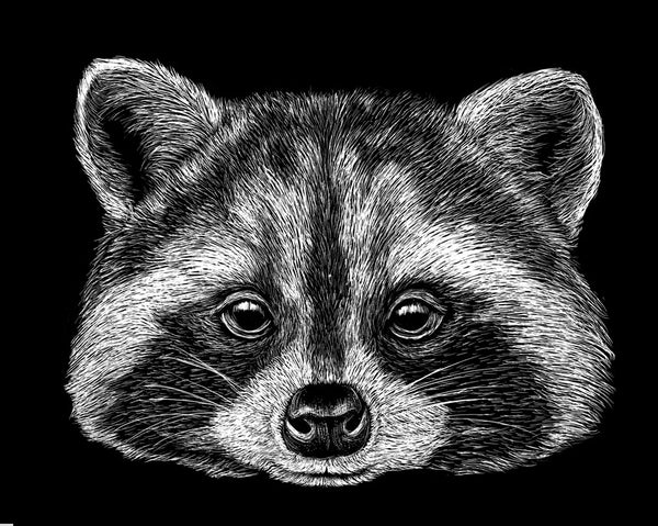 Raccoon Ladies Tank Top