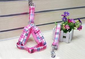 Dog Harness + Leash Sets