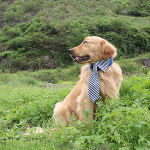 Dog Tie Collar, Adjustable for Large Dogs