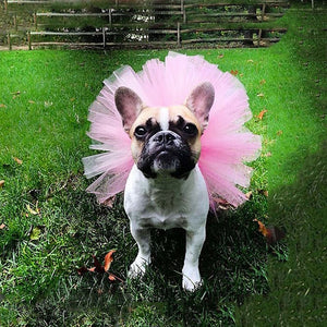 Dog Princess Tutu Skirt