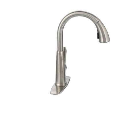 Pfister Pasadena Single-Handle Pull-Down Sprayer Kitchen Faucet with Soap  Dispenser in Stainless Steel