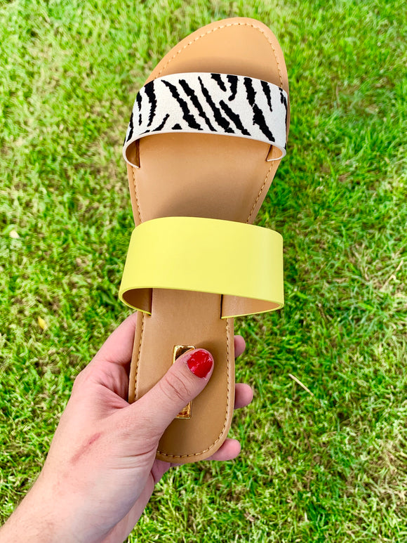 Highlighting Zebra Sandals