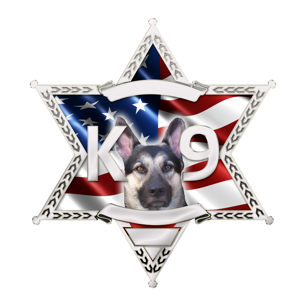 Police Sheriff Star 6 Point Wavy US Flag K9 Reflective Decals