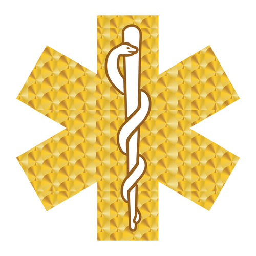 Gold Leaf Style Star Of Life Reflective Decals