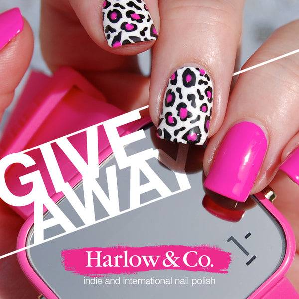 Harlow & Co. Instagram Giveaway