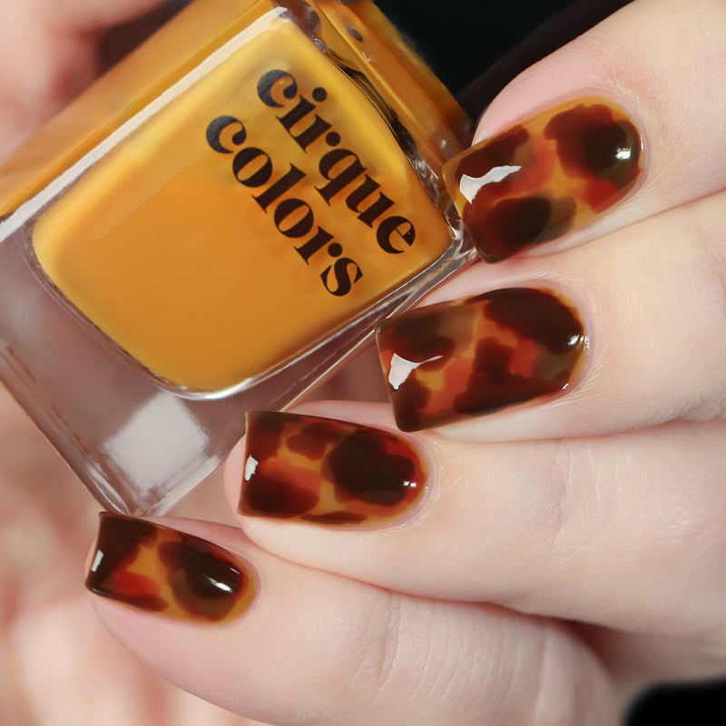 Tortoise Shell Nail Art Set