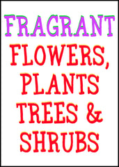 Fragrant Flowers & Plants