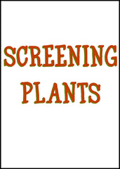 Screening Plants