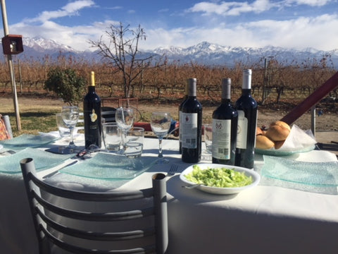 Lunch in Mendoza Vineyard