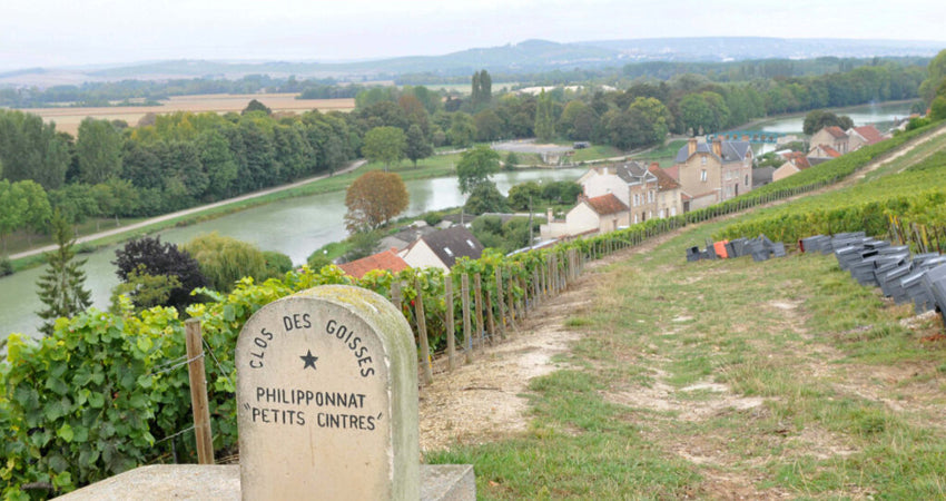 5 Champagne Houses