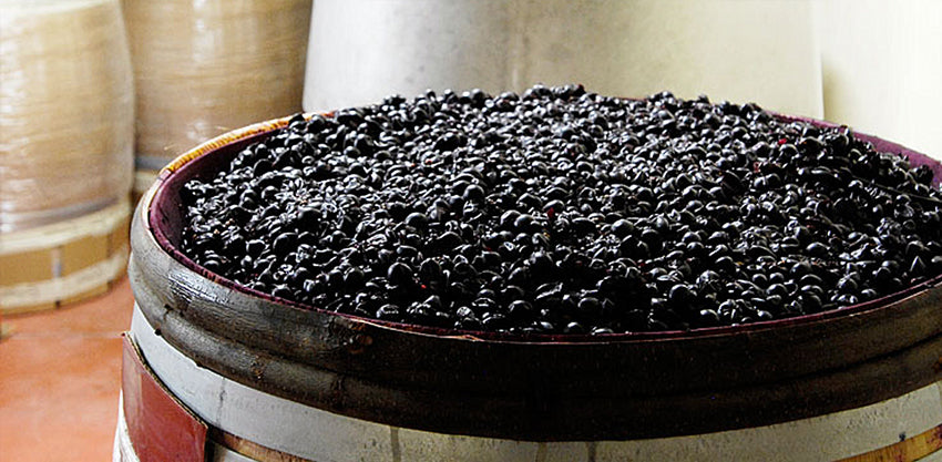 what is carbonic maceration