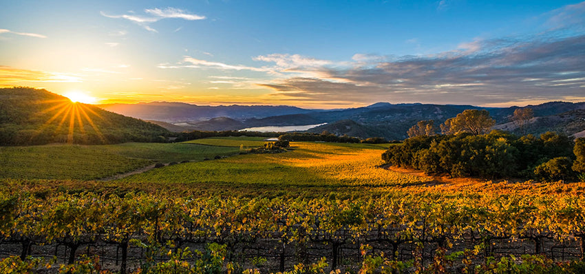 Napa Valle Climate