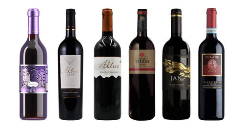 International Selection of 6 Premium Red Wines