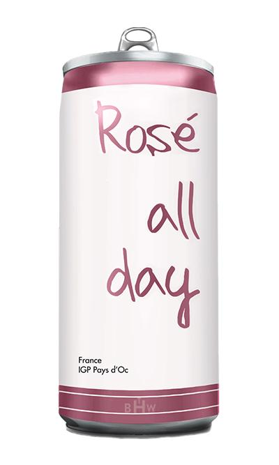 Rosé All Day 24ct in 250ml Cans - bighammerwines.com