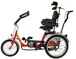 Belize Margay Special Needs Trike