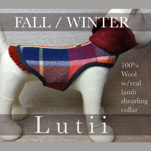 """SCOTTY""-100% wool w/shearling collar handmade winter dog harness coat - small dog harness, best pet harness, best non pull harness, designer dog harness, lace dog harness, lace pet carrier, best travel pet carrier, small dog carrier, small dog carrier by Lutii pet design, high end pet carriers, best small dog clothing, pet clothing."