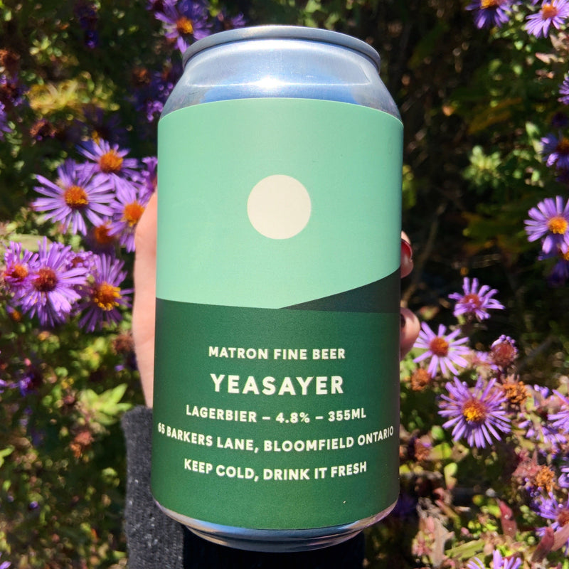 355ml YEASAYER LAGERBIER