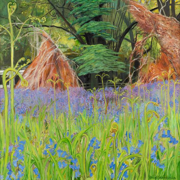 Bluebells, Ferns and Cedar Tree