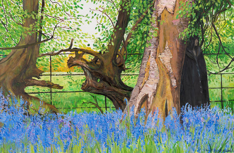 Bluebells in Ancient Woods