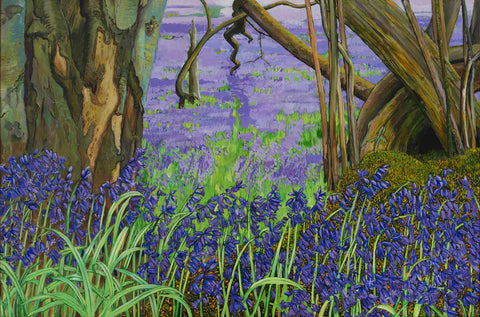 Bluebells and Moss