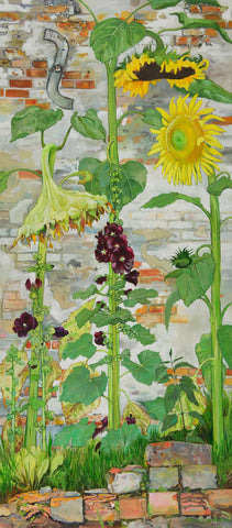 Sunflowers & Hollyhocks
