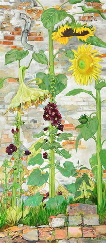 Sunflowers and Hollyhocks