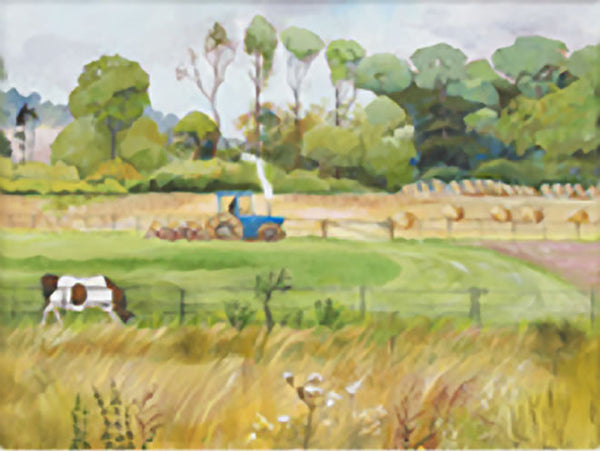Childwickbury Fields & Blue Tractor