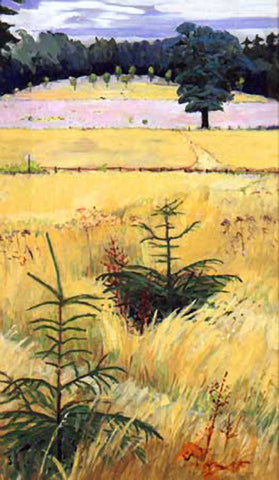 Little Pines in Dry Grass