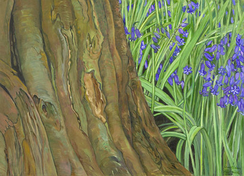 Tree Trunk & Bluebells
