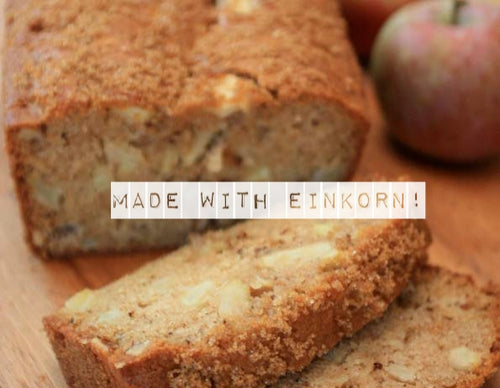 Bread -Einkorn Apple Nut