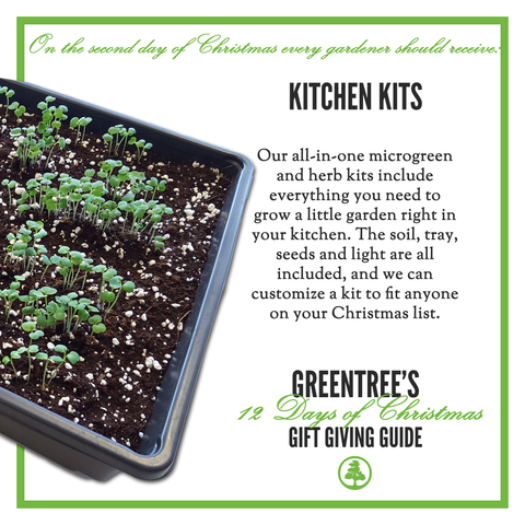 SecondDayofChristmas_GreenTree_KitchenKits