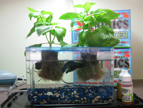 12 gift ideas for gardeners greentree for How to grow hydro in a fish tank