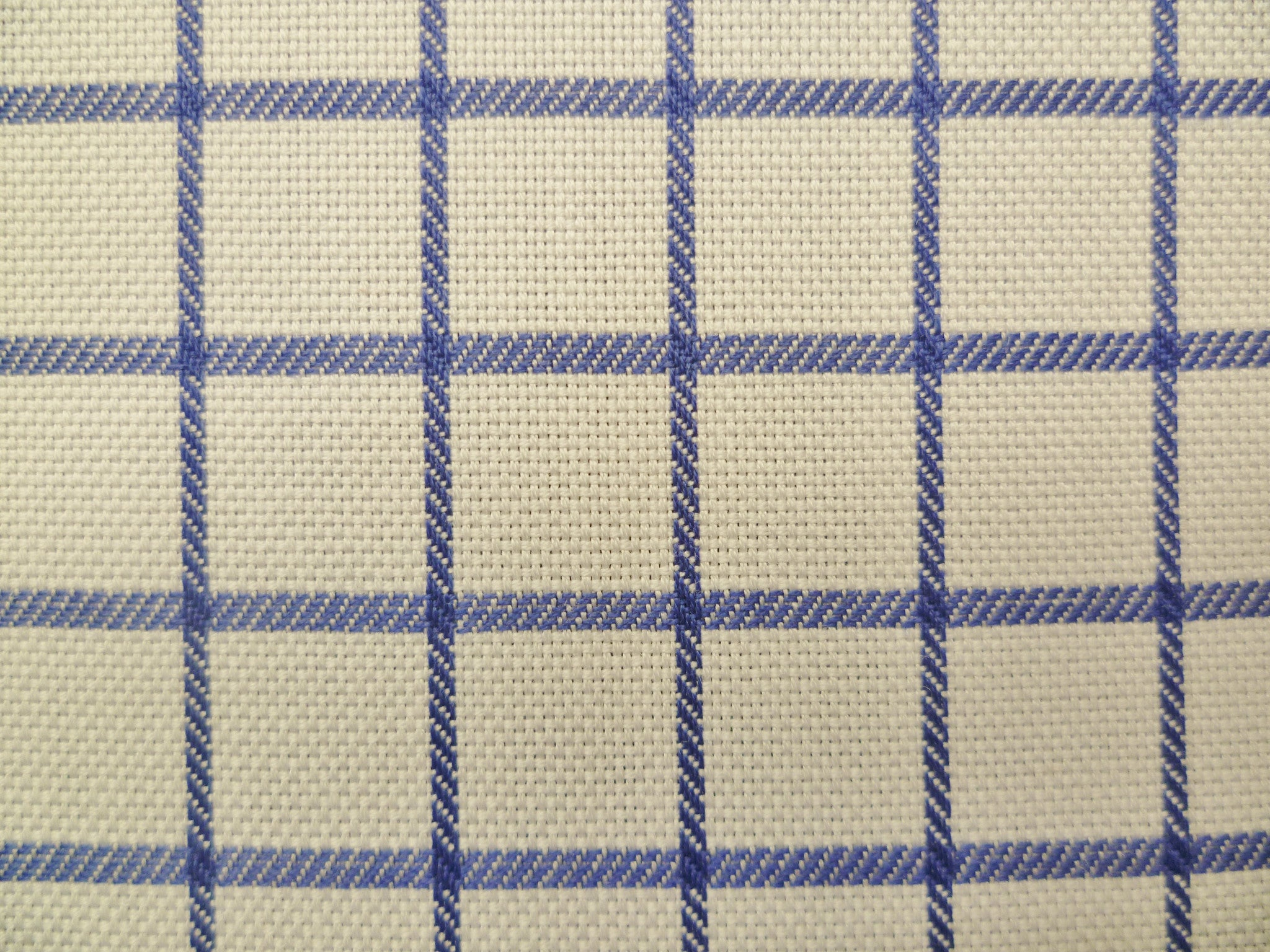 Ocean Blue and White Checked Cotton