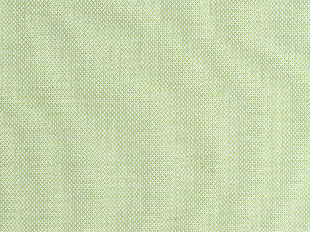 Satin Light Green and White Oxford Pique Cotton