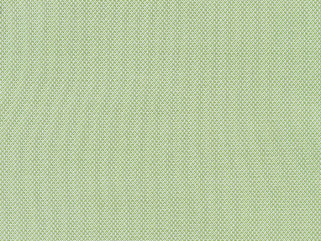 Pale Green Oxford Pique Cotton