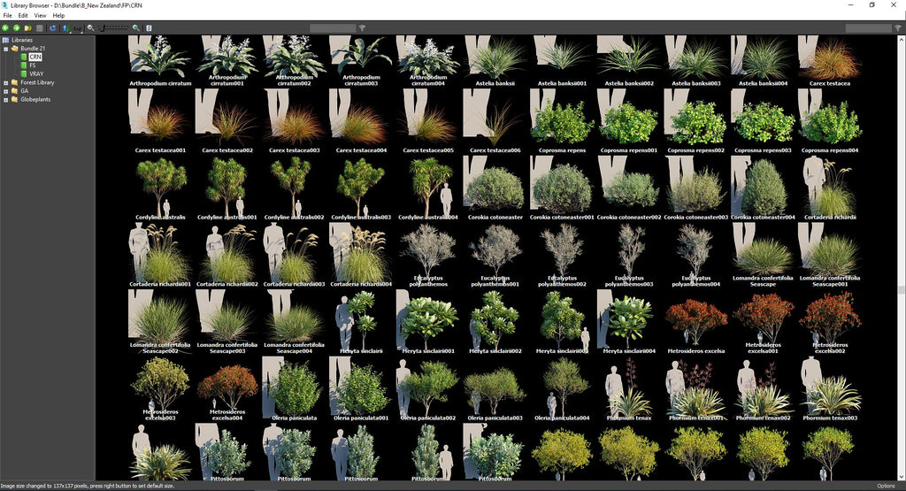 globe plants 3d plant model bundle 21 new zealand plants forest pack