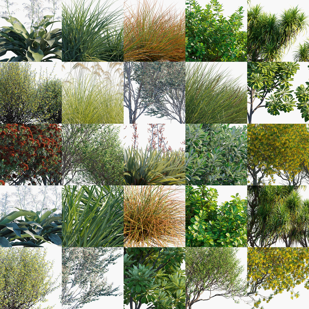 globe plants 3d plant model bundle 21 new zealand plants list