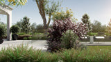 Load image into Gallery viewer, Bundle 03 - Garden Plants (3D Model)