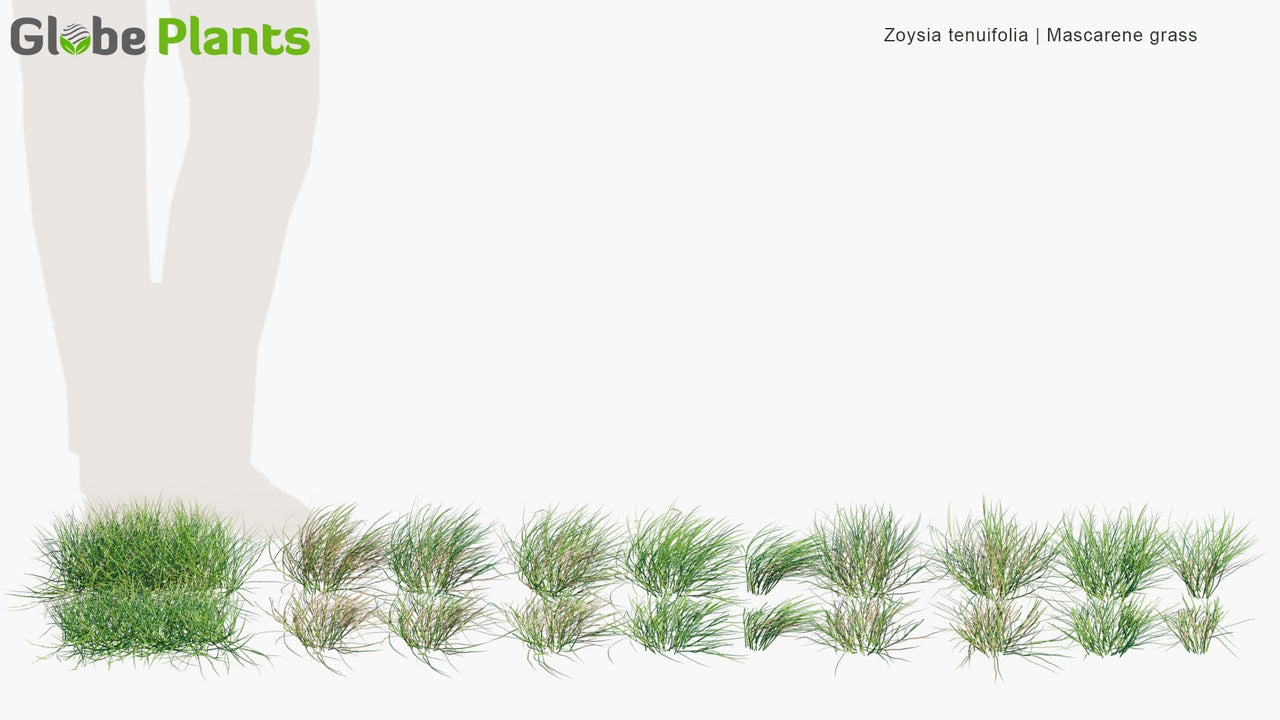 Bundle 13 - Grass & Lawn
