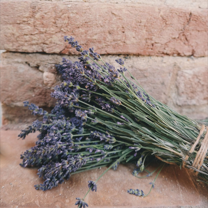Why is lavender relaxing?