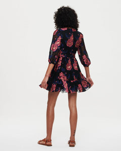 Anita Mini Dress