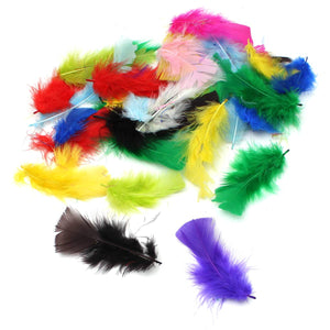 Craft Feathers