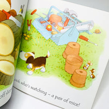 Load image into Gallery viewer, Usborne Phonics Readers: Ted's Shed